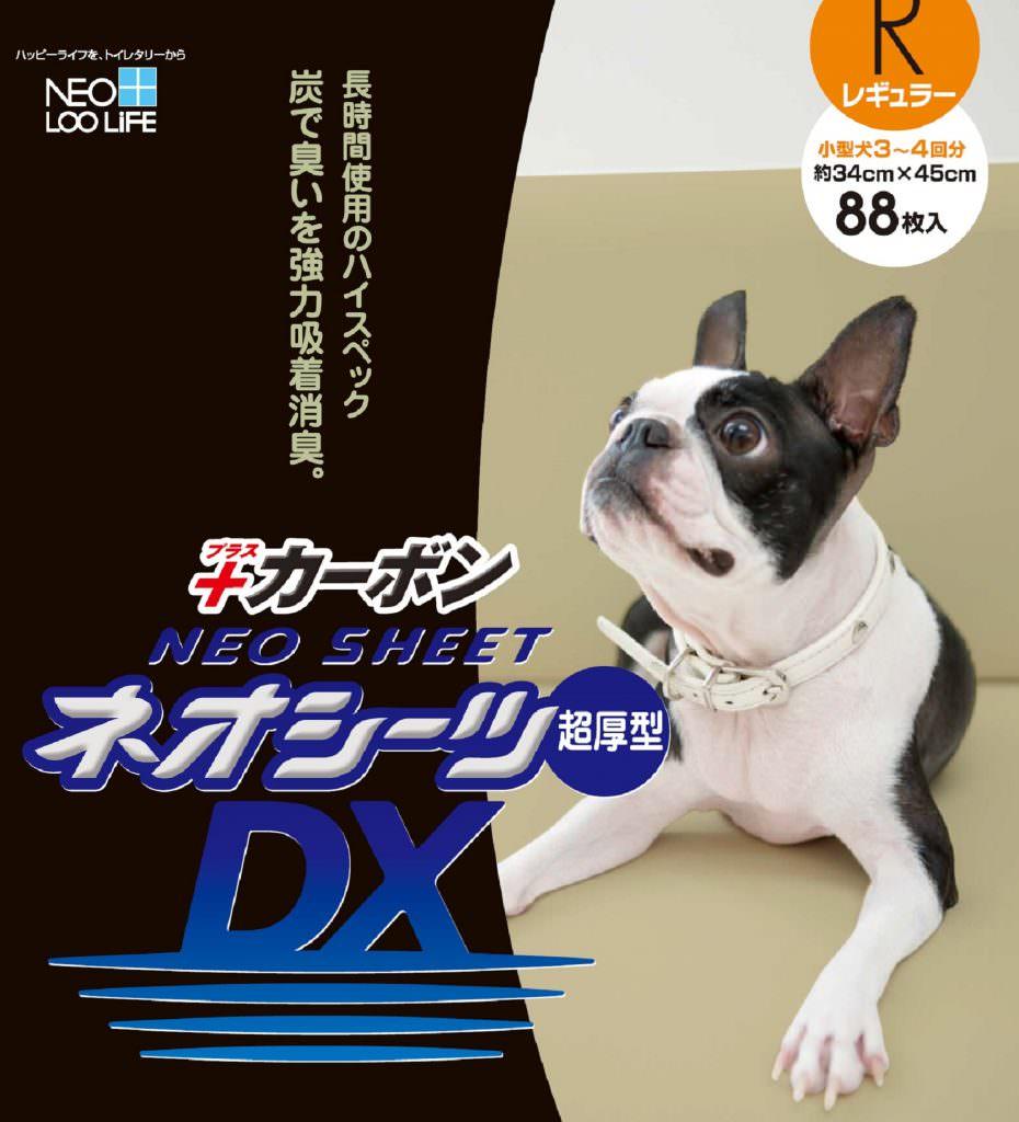 dx_r88