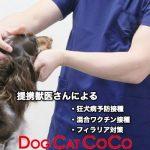 DOGCATCOCO動物病院
