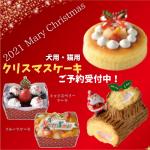 2021年犬猫用クリスマスケーキ
